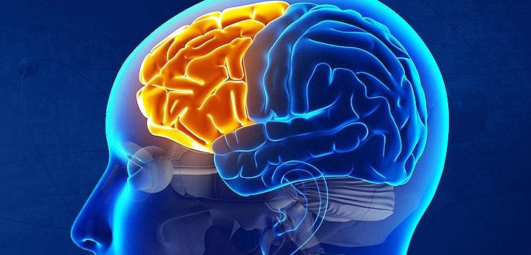 پاورپوینت تحلیل و بررسی سیستم مغز