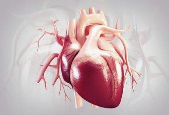 تحلیل و بررسی فیزیو تراپی قلبی، عروقی و ریوی جلد 3