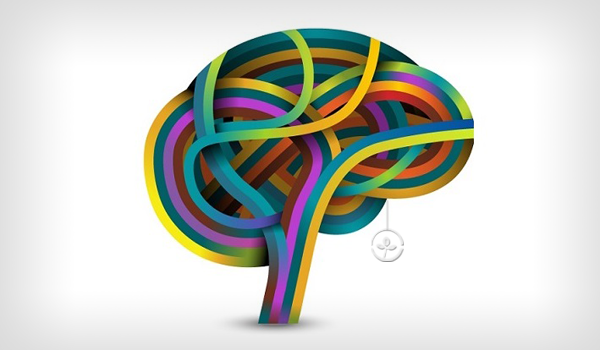 تحلیل و بررسی مطالعه بین تیپهای شخصیت و سبکهای یادگیری