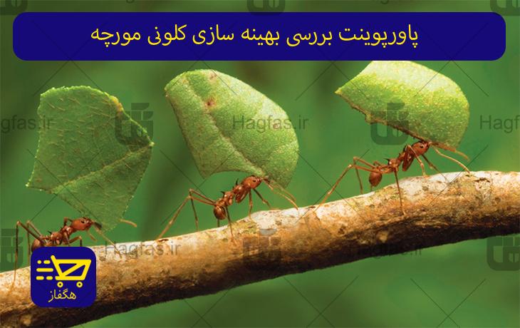 پاورپوینت بررسی بهینه سازی کلونی مورچه