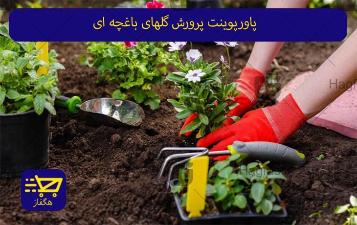 پاورپوینت پرورش گلهای باغچه ای