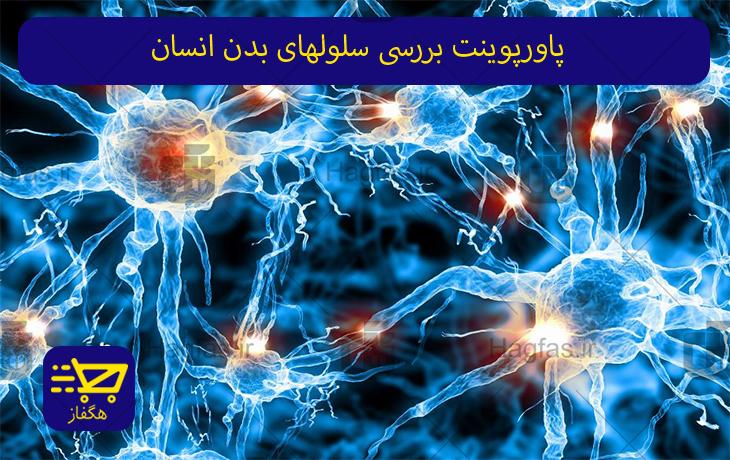 پاورپوینت بررسی سلولهای بدن انسان