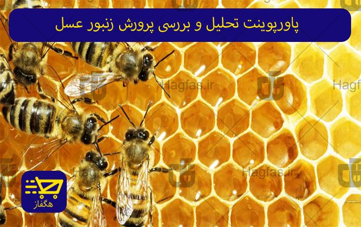 پاورپوینت تحلیل و بررسی پرورش زنبور عسل