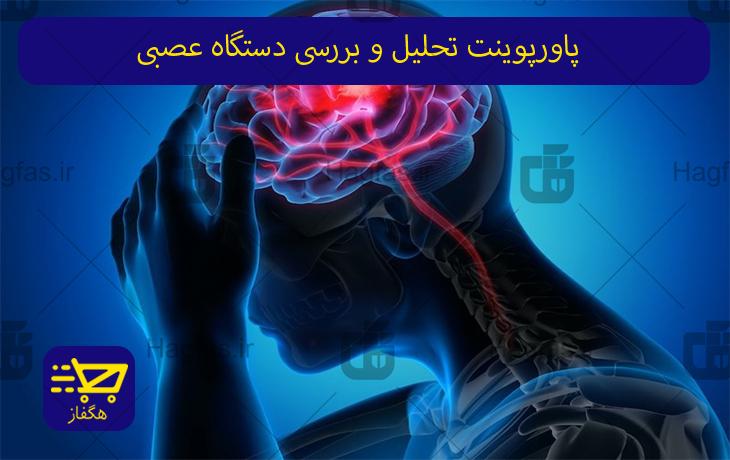 پاورپوینت تحلیل و بررسی دستگاه عصبی