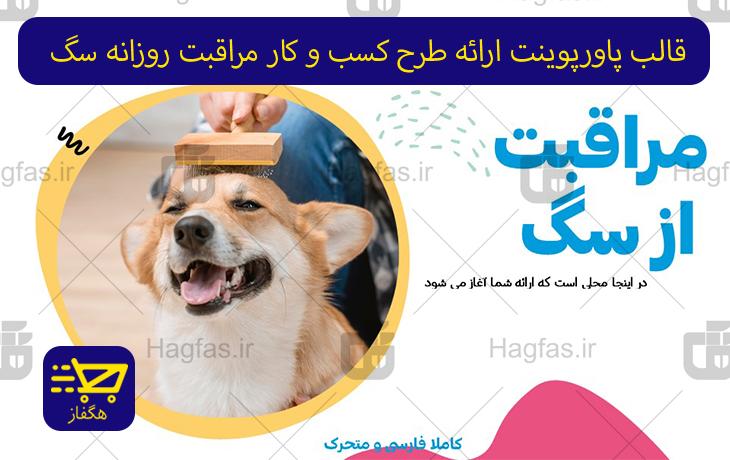 قالب پاورپوینت ارائه طرح کسب و کار مراقبت روزانه سگ